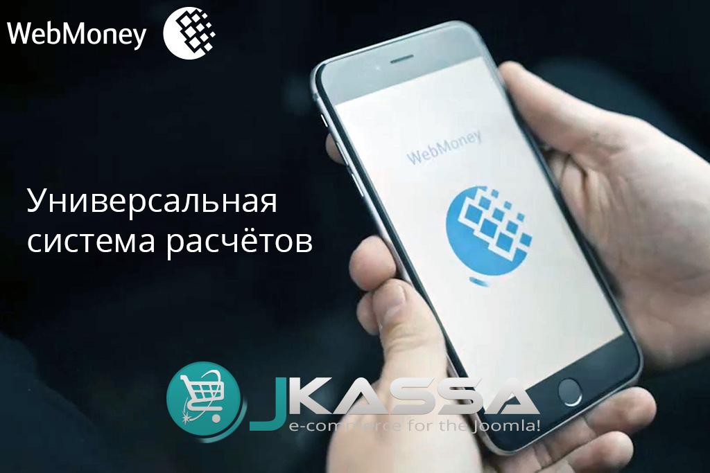 webmoney_preview
